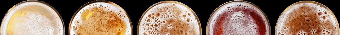biere-verres-arborescence2